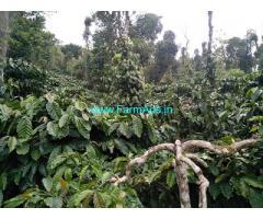 8 acre Robusta plantation sale in Mudigere