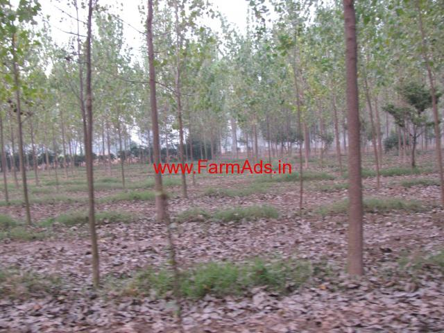 Agriculture Land for Joint venture in Shahbad - Haryana