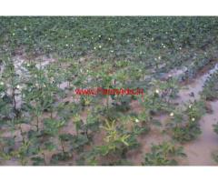 10 acre agricultural land for sale in Chamaraj Nagar - Mysore