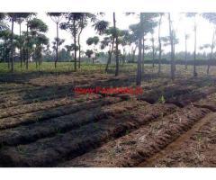 10 Acres Farm land for sale in Periyapatna Taluk - Mysore