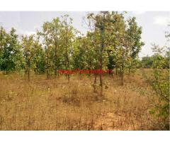 3.15 Acres Agriculture Land for sale in Shoolagiri - Hosur