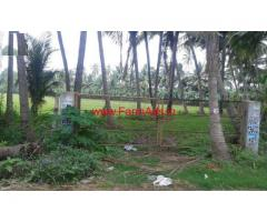 13.56 Acre Agricultural Land for Sale in Amalapuram- Andhra Pradesh