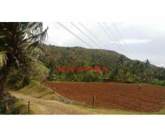 10 Acres Coconut Farm for sale in Thavalam - Attapady - Palakkad