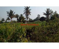 40 Acres agriculture Land for sale at Sanipalli Near penukonda