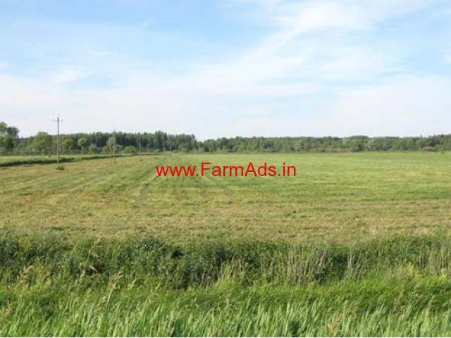 Agriculture Land for Sale Near Vidisha - Madhya Pradesh