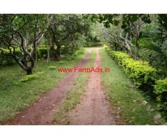 Homestay for sale in kemmangundi - Chikmagalur