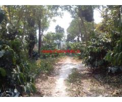 18 acre drip irrigation coffee estate for sale in Mudigere