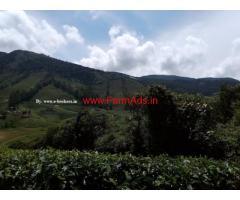 cardamom estate for sale in Megamalai - near Theni