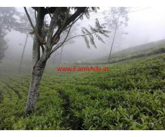 Rajarajeshwari Tea Estate for immediate sale in Ooty