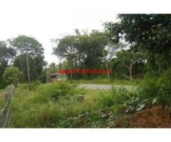3.5 Acres Farm land for sale 3 KMS from Chikmagalur