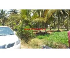 7 Acres farm land and Ready farm house for sale