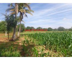 2 Acres Agriculture Farm Land for sale at Gumalpuram, Anekal To Thally