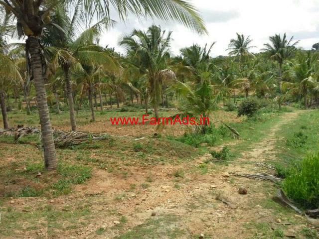 4 Acre Coconut Farm Land For Sale In Chitnahalli H An