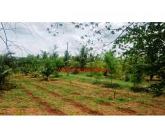 4 Acre East Facing Farm Land, 15 kms From Kunigal Town