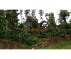 125 Acres Coffee Estate for sale in Koppa - Chikkamagaluru