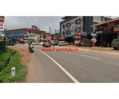 43 cent (18731 Sq ft ) Home Stay for sale in Madkeri