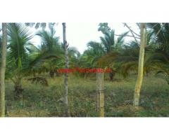 3 Acres Coconut Farm Land for sale at Novinkere , Tiptur