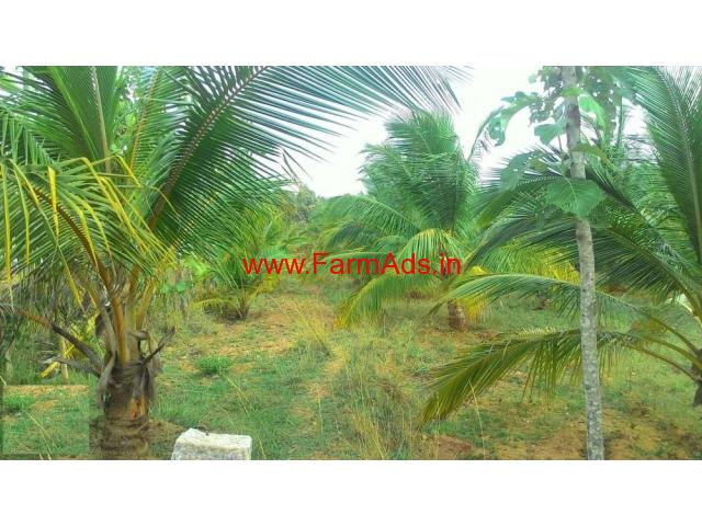 2.25 Acres Coconut Farm Land for sale in Novinkere - Tiptur