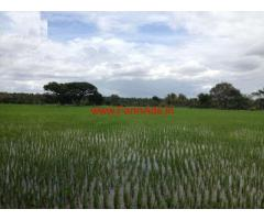 1.5 Acre agriculture land for sale in Novinakere , Tiptur