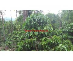 6 acre robusta Coffee Estate for sale near Kanachur-Devarunda
