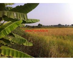 40 Bigha Well Cultivated agriculture land for sale near Datia - Bargai
