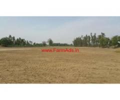 6 Acre 7 Marlas Ariculture Land for Sale at Badla Harta