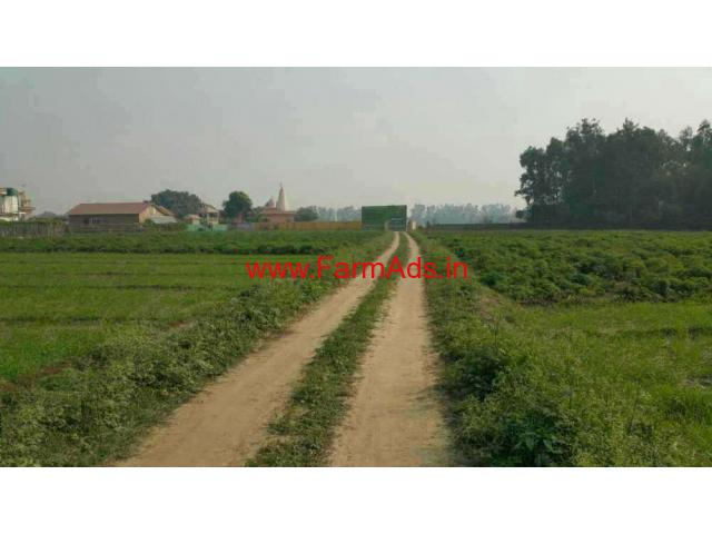 10 Bigha farm house and agriculture land for sale in noida
