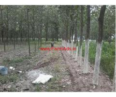 160 Bigah Agriculture Land for Sale in Biharigarh, Saharanpur