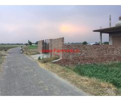 1500 sq yard Farm House for sale in Ludhiana - Chandigarh Road