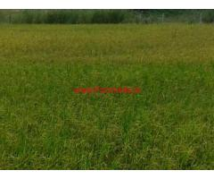 12 Acres Agriculture Land for sale at Nampally Mandal Road