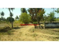6 Acres Farm land available for sale at Pattanam