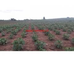 70 Acres cheap rate land 2 kms from Kabini back water