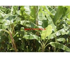 34 Cents Agriculture Land for sale in Navalkadu Junction,