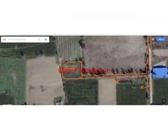 16.5 Marla Agriculture Land for sale in Sathiana, Lachowal