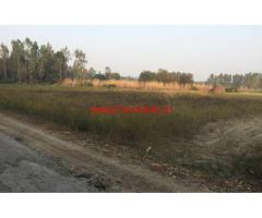 177 Marla Agriculture Land for sale in Gignowal Village