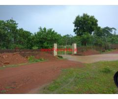 Fully Developed Cashew Farm for sale - kalinga Nagar - Odisha
