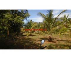 5 Acres Coconut Farm Land Available in Vathalagundu, Dindigul Ds