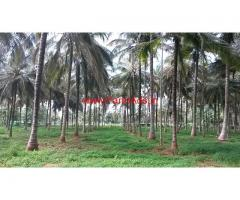 3 Acres farm house at Purigalli 120 kms Bangalore