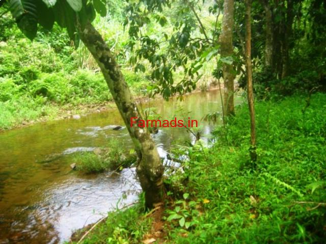 46 cents waterfront land for sale in meppadi wayanad for Land for sale in kerala