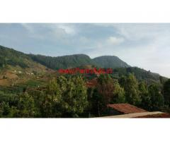 1.25 Acres Beautiful Tea Estate for sale near Doddabetta - Ooty