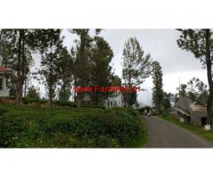 43 Cents  Tea Estate for sale in Pudumund - Ooty