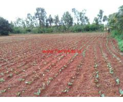 3 Acres Agriculture Land for sale near Halgeri