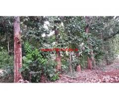 12 acres close to village land for sale  at 35 km from Mysore