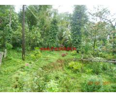 20 Acres Agriculture Land for sale in Jayapura, Kogre