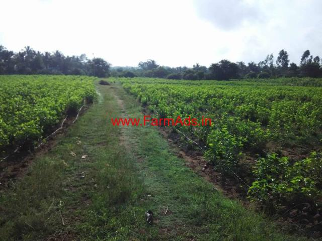 9 Acres Agriculture Land for Sale - 110 Kilometers from Bangalore.