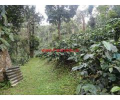 8 Acres of Coffee Plantation for Sale at Coorg, Madikeri