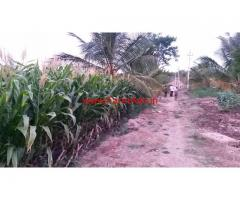 7.5 acres Coconut farm for sale at At Karya - Hullahalli