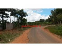 6 acres farm land at Jannur 37 km from Mysore