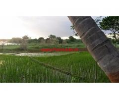 30 km from Mysore 16 acres land for sale