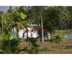 7 acres fully developed farm land for sale 43 kms from Mysore